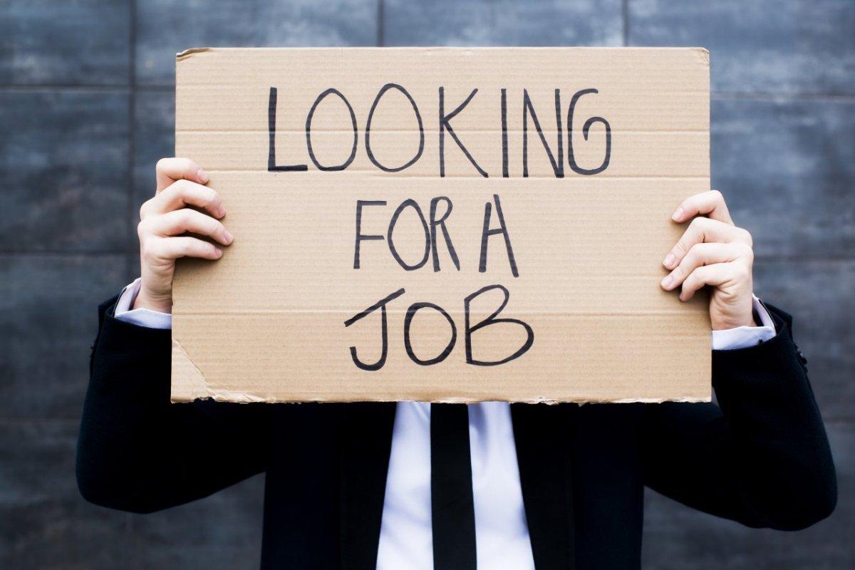 ricerca lavoro_giovani_laureatopentito